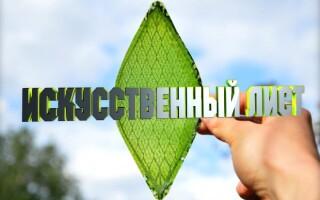 Перемещение искусственных листьев из лаборатории на воздух