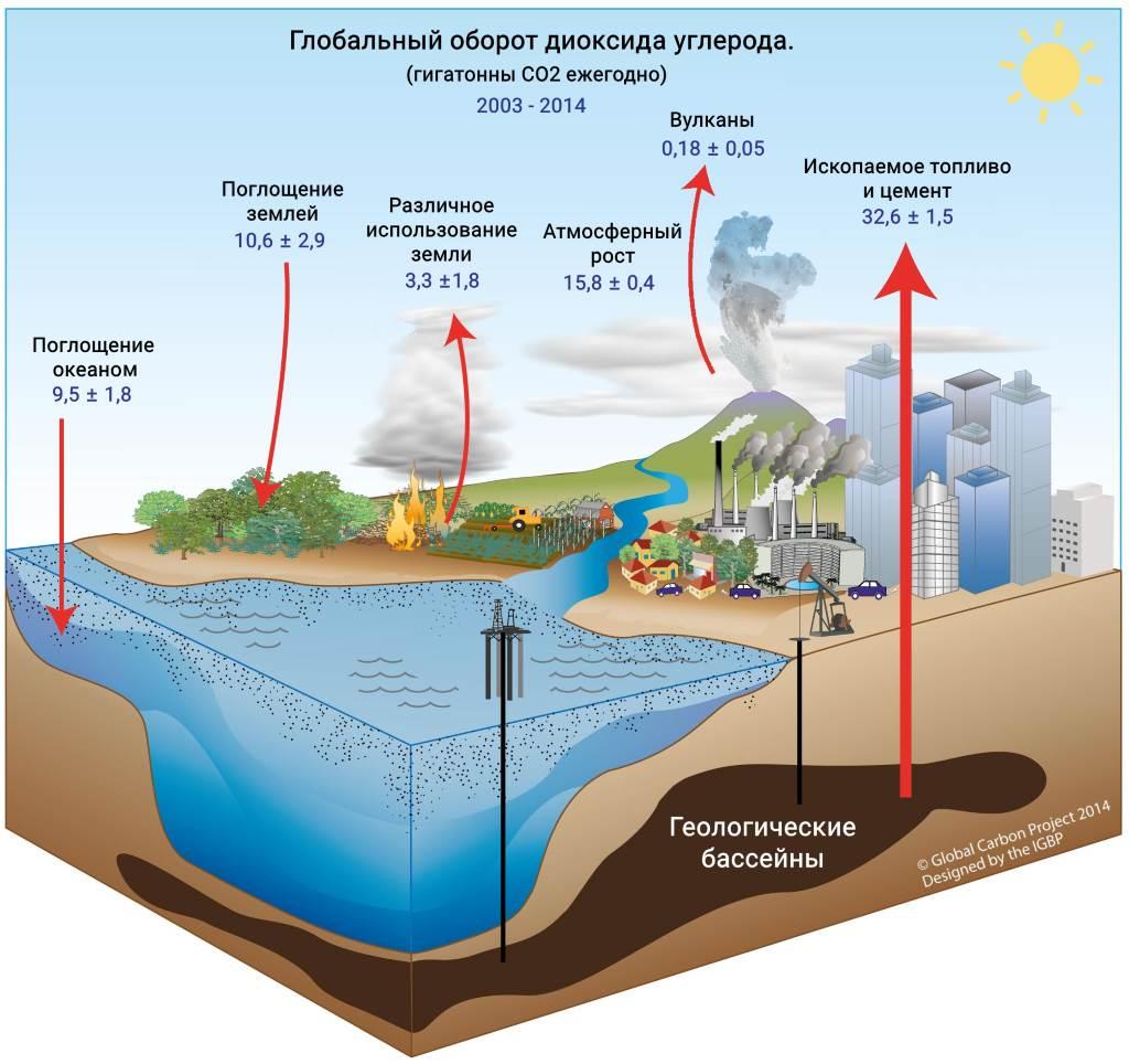 Глобальный оборот CO2