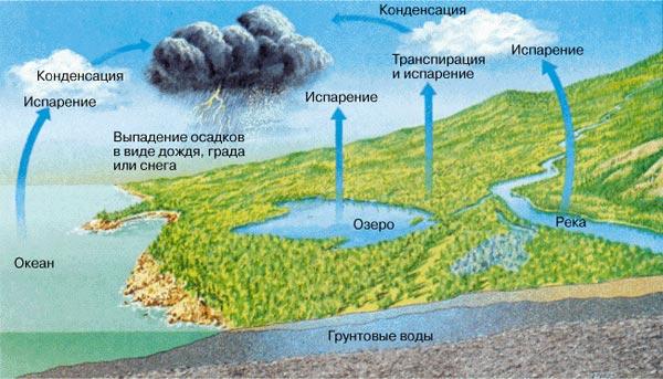 Круговорот водяного пара в атмосфере