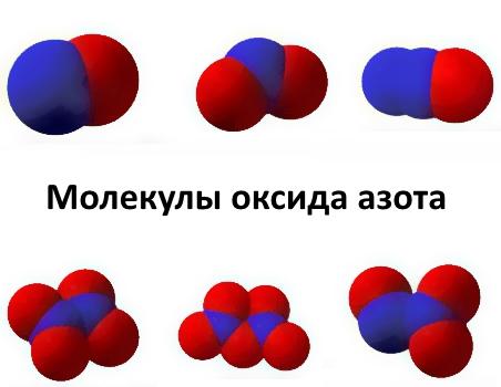 Молекулы оксида азота