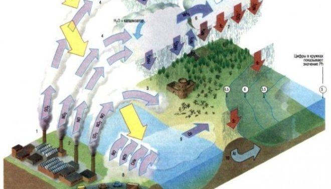 Схема возникновения кислотных дождей