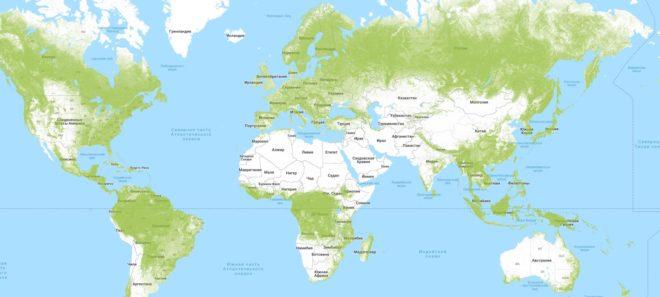 Карта лесов нашей планеты